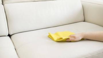 Polstermöbel reinigen
